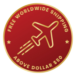 Fast-Shipping-Icon
